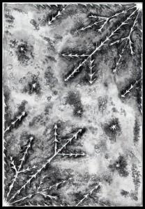 Eiskristalle 4